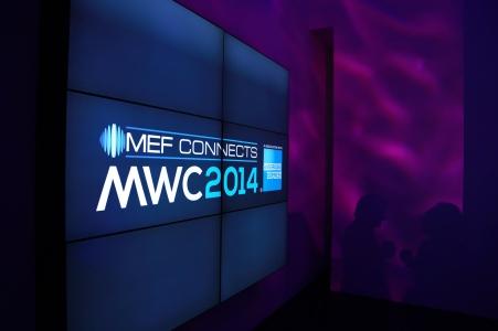MEF2014 (23)
