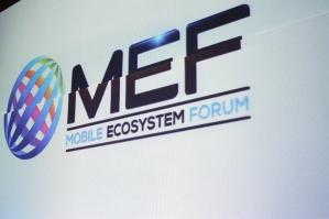MEF (84)